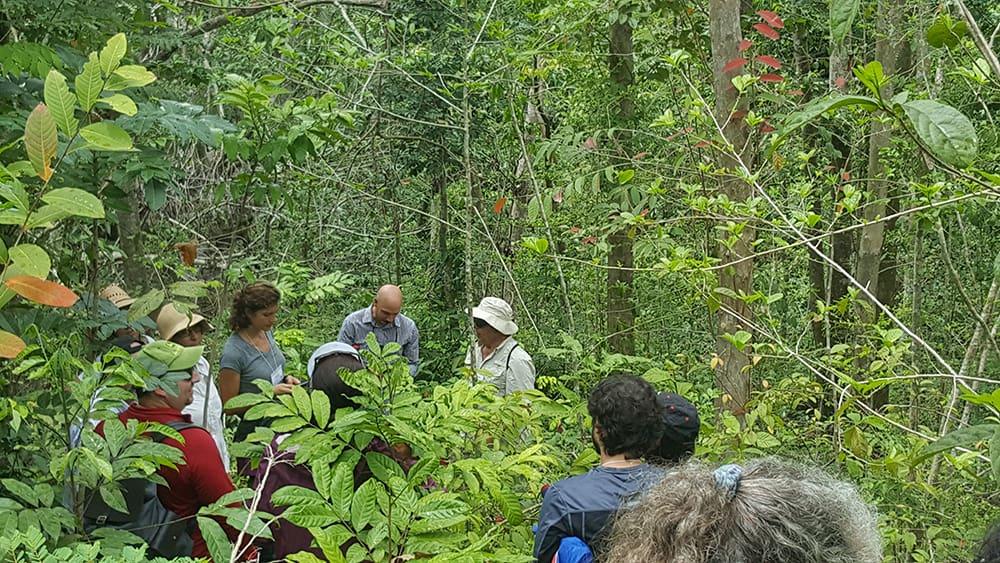 Secondary Forest Management Workshop